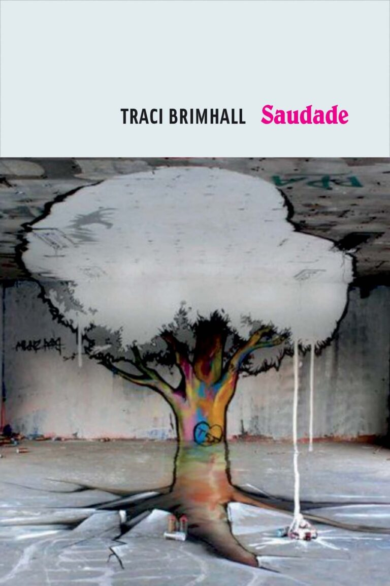 Cover of Saudade by Traci Brimhall