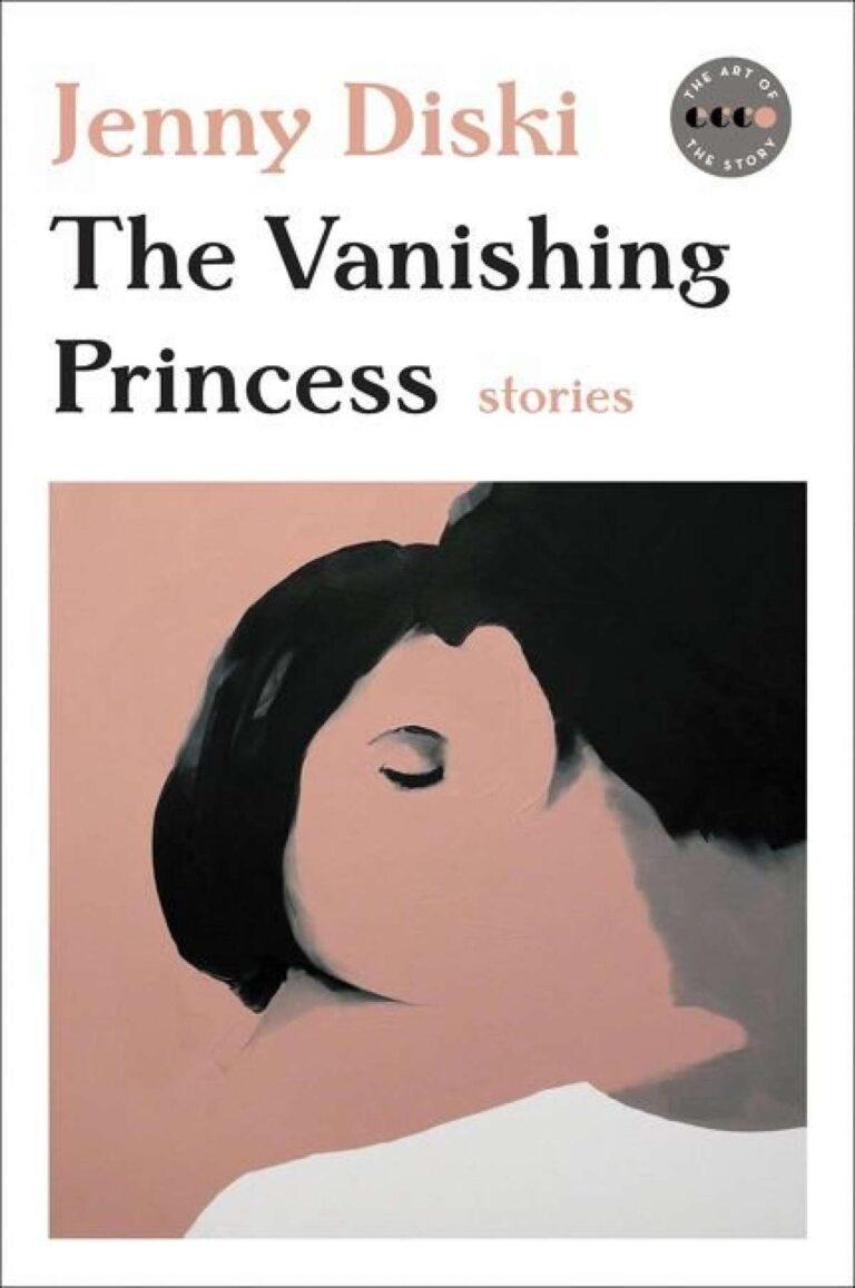 Cover of The Vanishing Princess by Jenny Diski